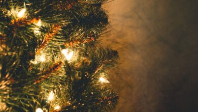 Photo of Julekort – Det skal du skrive til dine nærmeste